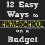 12 Easy Ways to Homeschool on a Budget